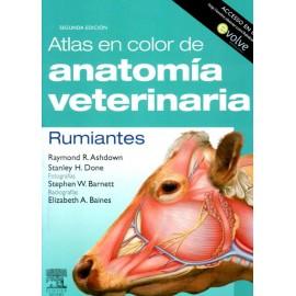 Atlas en color de anatomía veterinaria. Rumiantes - Envío Gratuito