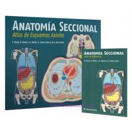 Anatomía seccional. Atlas de esquemas axiales + guía de referencia