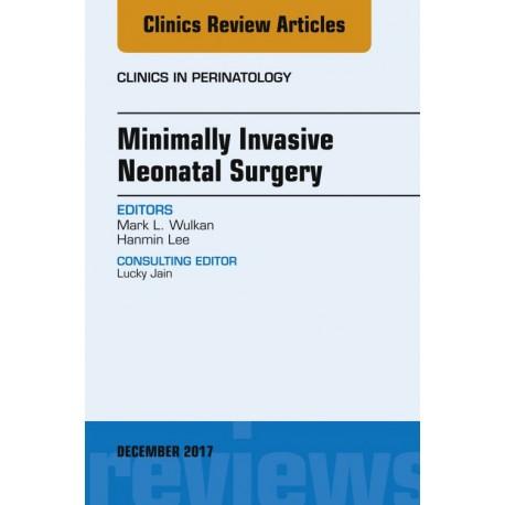 Minimally Invasive Neonatal Surgery, An Issue of Clinics in Perinatology, E-Book (ebook) - Envío Gratuito