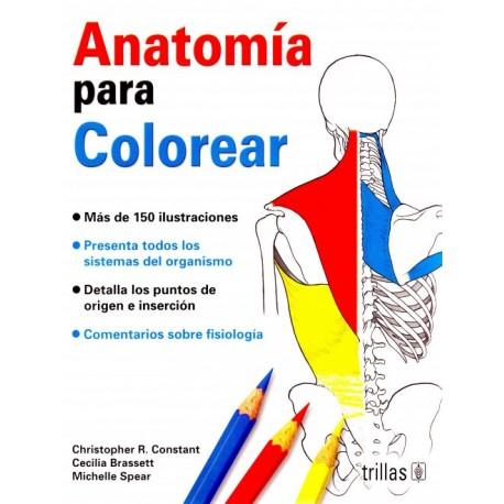 Anatomía para Colorear - Envío Gratuito