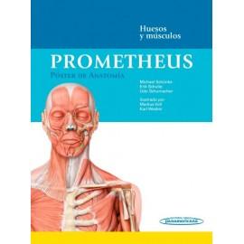 Prometheus. Póster de Anatomía: Huesos y músculos