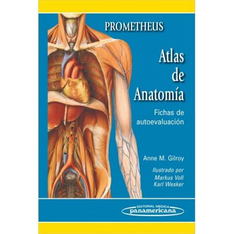 Prometheus. Atlas de anatomía: Fichas de autoevaluación - Envío Gratuito